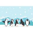 winter north pole arctic landscape penguin vector image vector image