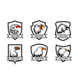 eagle or american falcon heads with shields logo vector image