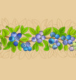 blueberry plant pattern on color background vector image