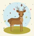 cartoon deer wild animal with falling leaves