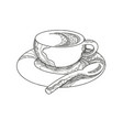 cup of coffee doodle vector image vector image