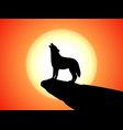 howling wolf stands on a rock at sunset vector image vector image