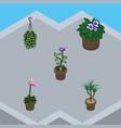isometric plant set of flowerpot flower blossom vector image vector image