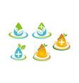 leaf water template set vector image vector image