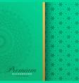 premium vintage mandala pattern background vector image