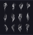 set isolated cigarette smoke or censer steam vector image vector image