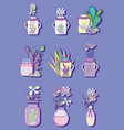 set of mason jar with flowers drawings vector image