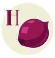 stylized onion vector image