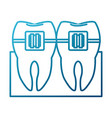 teeths and dental care vector image
