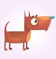 cartoon brown pitbull dog mascot vector image