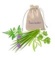 Fines herbes sachet vector image vector image