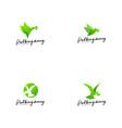 green bird logo template animal logo concept vector image vector image