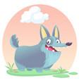 cardigan welsh corgi dog breed cartoon vector image