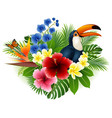 cartoon toucan butterfly with flower background vector image