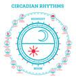 Circadian rhythm scheme sleep wake cycle