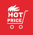 hot price banner vector image vector image