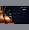 luxurious premium black abstract background vector image vector image