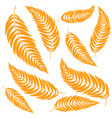 set flat abstract isolated orange leaf curving vector image