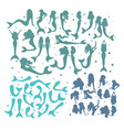 set of mermaid tails and bodies vector image