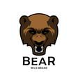 angry roaring bear head mascot vector image vector image