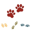 Animal Tracks set Isometric vector image vector image