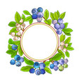 blueberry frame on white background vector image