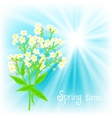 card with small white flowers vector image