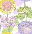 chrysantemum pattern vector image