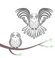 flying and sitting owl silhouette vector image