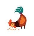 rooster pecking grain in yard vector image vector image