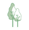 silhouette natural trees with botany icons vector image vector image