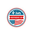 united states independence day icon vector image