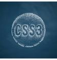 CSS3 icon vector image
