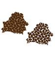belarus - map of coffee bean vector image vector image
