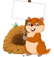 cartoon groundhog holding blank sign vector image vector image