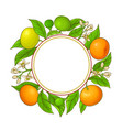 tangerine ranches frame on white background vector image vector image
