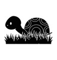 cute turtle in grass vector image vector image