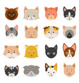 different faces of cats vector image vector image