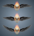 Flaming mutant skulls vector image vector image