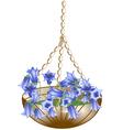 hanging basket vector image vector image