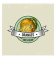 orange vintage hand drawn fresh fruits background vector image vector image