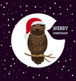 owl with santa hat card christmas card vector image vector image