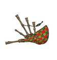 bagpipes color sketch engraving vector image vector image