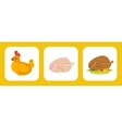 Chicken flat set vector image