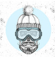 hand drawing hipster skull in winter hat vector image vector image