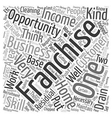 Home Franchise Opportunity Which Business Is vector image vector image