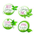 isolated leaf grass of spring time quotes vector image vector image