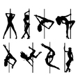 Pole dance women vector image