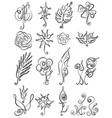 Set floral icon in line art design