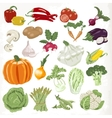 Set of vegetables Icons isolated on white vector image